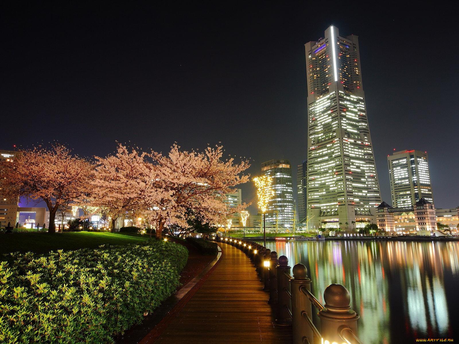 Японии токио картинки